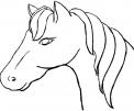 testa di cavallo da colorare..cavallo con lunga criniera da colorare..battesimo della sella con cavallo in fattoria didattica per bambini