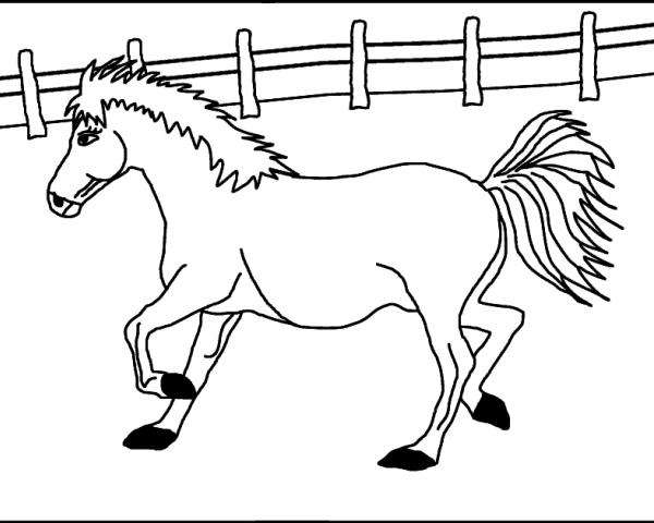 Disegno cavallo da colorare disegno pony da colorare for Fattoria immagini da colorare