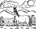 cavallo in fattoria didattica a mantova..cavallo in fattoria didattica a cremona..cavallo in fattoria didattica a brescia..cavallo in fattoria didattica a bergamo