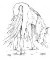 cavallo in fattoria didattica a pavia da colorare..cavallo in fattoria didattica vicino a milano..cavallo in fattoria didattica a novara..cavallo in fattoria didattica a torino