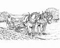 disegno cavallo con aratro da colorare..disegno cavallo che lavora la terra da colorare..cavallo durante l'aratura del terreno..cavallo da tiro al lavoro da colorare