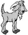 disegno capra da colorare..capretta da colorare..caprone da colorare..capre in montagna da colorare per bambini