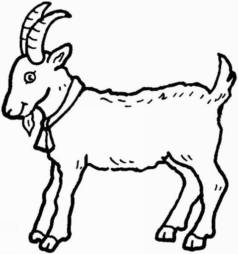 Disegno capra da colorare disegno pecora da colorare for Disegno della fattoria americana