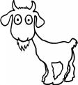 capretta della fattoria da colorare..fattoria didattica vicino a lugano da visitare..fattoria didattica con capre a varese