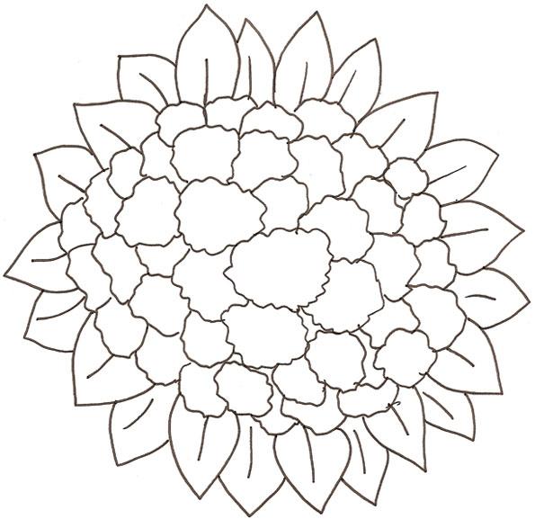 Disegno Verdura Da Coloraredisegno Ortaggio Da Colorare
