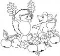 disegno di riccio da colorare..fattoria didattica per bambini in lombardia..fattoria didattica in piemonte