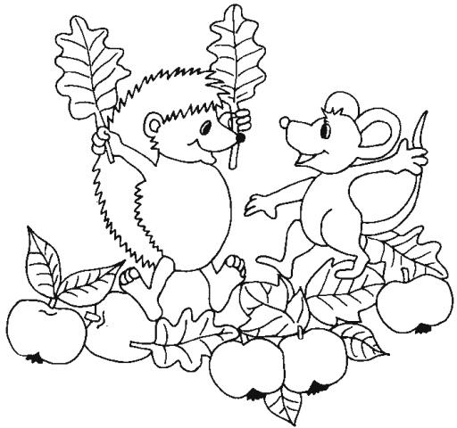 Disegno di riccio da colorare fattoria didattica per for Riccio da colorare