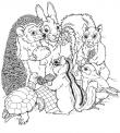 disegno di animali del bosco da colorare..riccio scoiattolo e lepre da colorare..fattoria didattica a bergamo