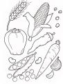verdure da colorare..ortaggio da colorare..verdure della fattoria..fattoria didattica matera..fattoria didattica foggia
