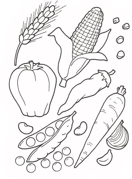 Verdure da colorare ortaggio da colorare verdure della for Fattoria immagini da colorare