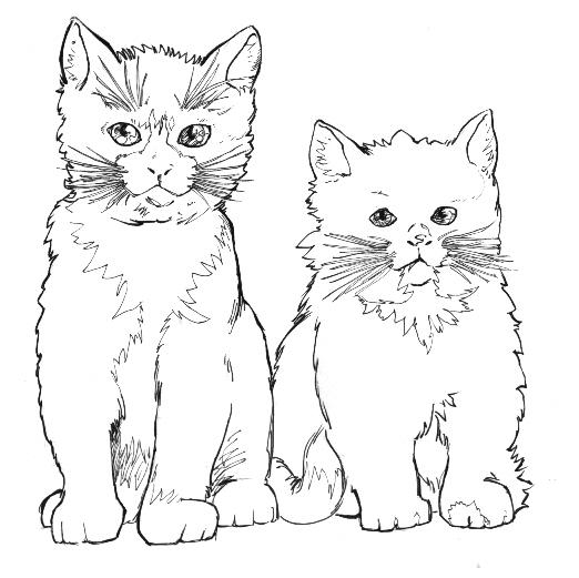 Disegno Gatto Da Colorare Disegno Micio Da Colorare Micetti Da Co
