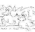 disegno papere nello stagno..germano reale da colorare..fattoria didattica venezia..fattoria didattica merano