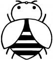 disegno ape da colorare..api nell'alveare da colorare..ape su fiore da colorare..fattoria didattica milano
