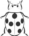 disegno di coccinella con sette punti neri da colorare..fattoria didattica della provincia di milano