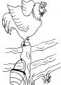 disegno gallo del pollaio da colorare..gallo con lunga cresta che canta da colorare..fattoria didattica della regione umbria