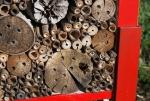 bombo in una casetta per insetti,bugs hotel con bombo,insetto imenottero in casetta per insetti