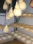 caciocavallo della fattoria la bonifica di medina,formaggio stagionato fattoria la bonifica a varese,caciotta della fattoria la bonifica di medina  provincia di varese