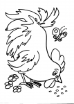 disegni animali della fattoria da colorare:gallina,gallo,pollo,pulcino:disegno gallina da colorare..disegno cappone da colorare..disegno uova di gallina da colorare..pollastro da colorare