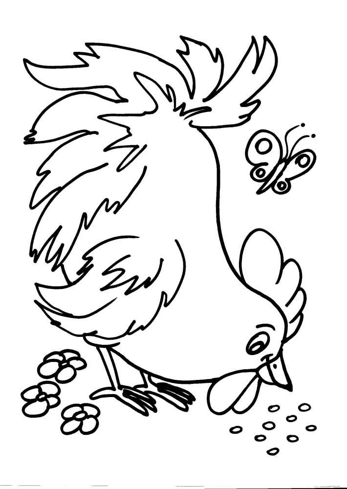 disegni animali della fattoria da colorare gallina gallo