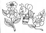 disegni animali da colorare:ape-fiori-miele,l'ape oltre a produrre del buon miele permette la fecondazione delle piante da frutto,agriturismi in provincia di varese,prodotti tipici varesini,disegno ape regina da colorare nell'alveare