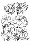 disegni animali da colorare:api,disegno ape regina da colorare in fattoria didattica..compleanno in fattoria..,agriturismi in provincia di varese,prodotti tipici varesini,disegno vespa da colorare...disegno bombo da colorare