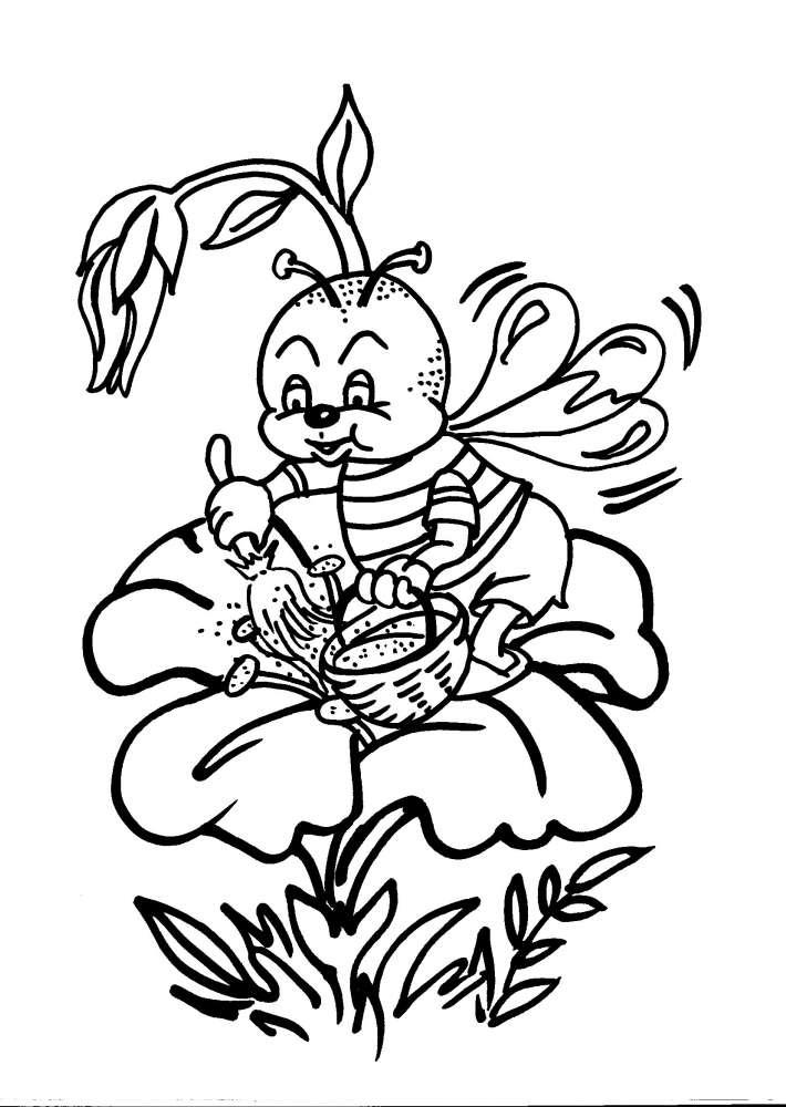 Disegni da colorare di ape maia timazighin for Disegni da colorare e stampare ape maia