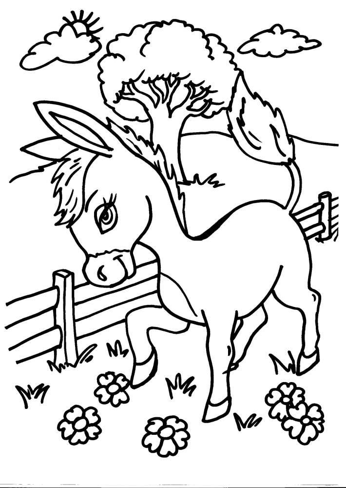 Disegno asino da colorare disegno somaro da colorare for Disegno della fattoria americana