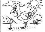 disegni animali della fattoria da colorare:gallina,pollastro,pulcino-disegno da colorare pulcino in fattoria didattica..disegno galletto da colorare..disegno gallina nel pollaio da colorare..dsiegno pulcino con uovo da colorare