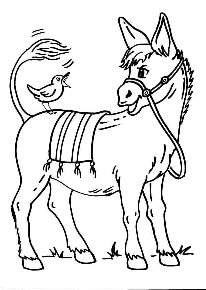 Animali da colorare asino l 39 idea migliore e pi completa for Disegno della fattoria americana