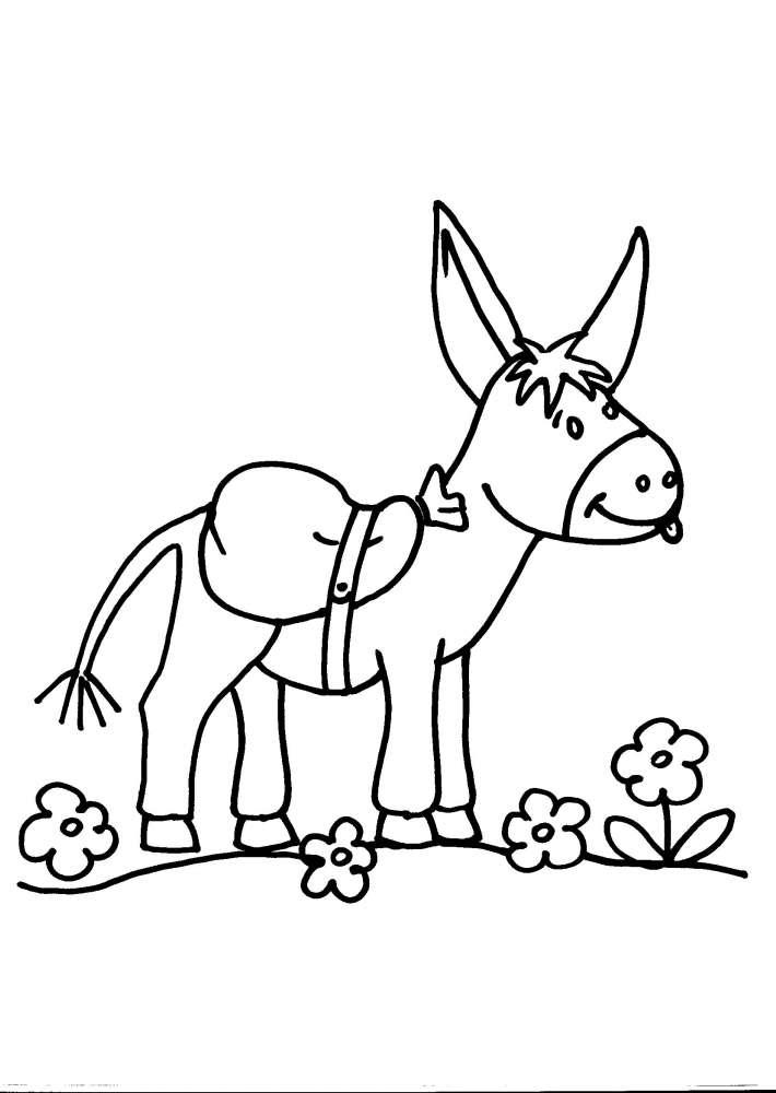 Disegno asinello della fattoria da colorare asino asina for Disegno della fattoria americana