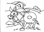disegni animali della fattoria da colorareasinoa