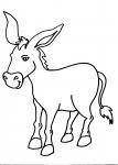 disegni asino della fattoria da colorare:asino-asina-asinello disegno asino da colorare in fattoria didattica., agriturismi in provincia di Varese,disegno asinello da colorare...disegno somarello da colorare...disegno asino di martina franca da colorare
