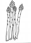 disegni animali da colorare:asparagi-ortaggi-disegno asparagi da colorare in fattoria didattica..disegno frutta da colorare..disegno verdura da colorare..disegno pomodoro da colorare..disegno ortaggio da colorare