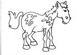 disegno cavallo della fattoria da colorare:cavallo-disegno cavallo da colorare in fattoria didattica..agriturismi in provincia di varese,disegno pony da colorare..disegno piccolo cavallo da colorare..disegno cavallo da corsa da colorare per bambini