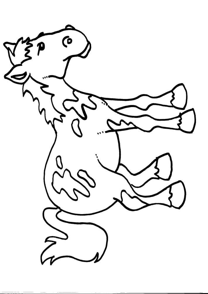 Disegno cavallo da colorare disegno pony da colorare for Disegno cavallo per bambini