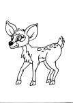 disegni animali da colorare:cervo-cerbiatto.disegno capriolo da colorare..disegno cerbiatto da colorare..disegno bambi da colorare..disegno camoscio da colorare..disegno alce da colorare..disegno renna da colorare