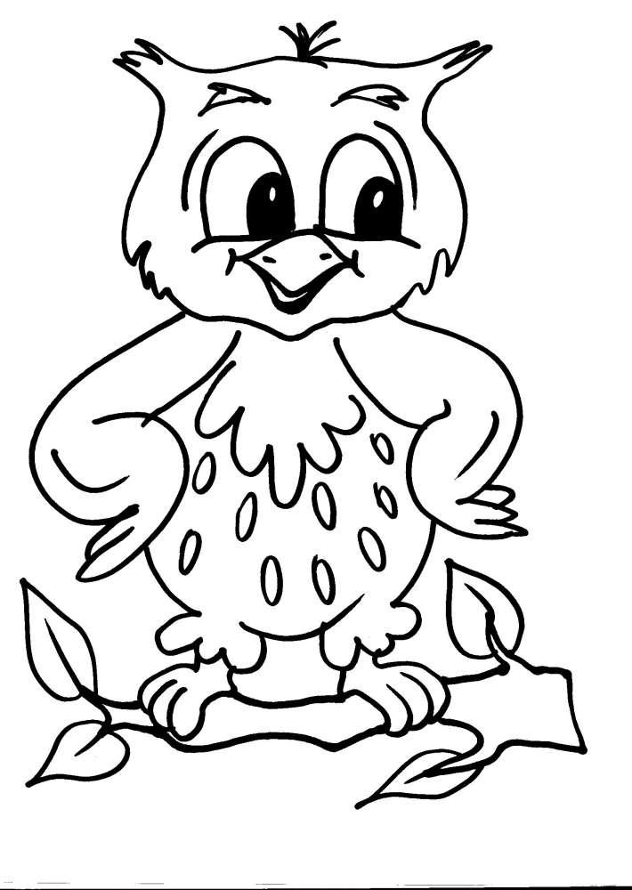 Disegni animali da colorare civetta disegno gufetto da for Disegni di cani da stampare e colorare