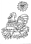 disegni animali da colorare:gallina,gallo,pulcino,disegno gallo da colorare in fattoria didattica...disegno tacchino da colorare..disegno faraona da colorare..disegno gallo colorato..pulcino da colorare