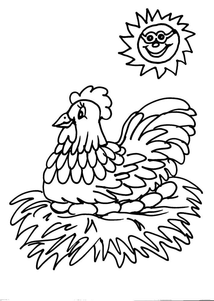 Disegni animali da colorare gallina gallo pulcino disegno for Immagini sole da colorare