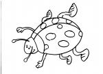 disegno coccinella da colorare:coccinella,disegno coccinella da colorare in fattoria didattica..coccinella da colorare...insetto da colorare..disegno coccinelle sui fiori da colorare per bambini