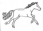 disegno cavallo da colorare:cavallo,disegno da colorare cavallo in fattoria didattica.. disegno pony in fattoria da colorare..disegno cavallo in maneggio da colorare..disegno cavallo da corsa in stalla da colorare