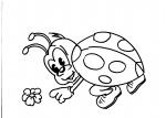 disegno coccinella da colorarecoccinelladisegno