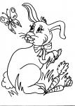 disegni animali in fattoria da colorareconiglio