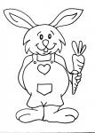 disegni animali in fattoria da colorare:coniglio,coniglietto..disegno coniglio da colorare in fattoria didattica..disegno leprotto da colorare...disegno lepre da colorare...coniglio da colorare per bambini..