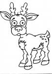 disegni animali da colorare:daino,cervo..disegno daino da colorare in fattoria didattica..disegno bambi da colorare..disegno lupetto da colorare..disegno volpe da colorare..disegno lupo da colorare..disegno alce da colorare