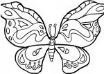 disegno farfalla da colorare:farfalla..disegno da colorare farfalla in fattoria didattica..disegno farfallina da colorare per bambini...disegno farfalla che vola da colorare...farfalla da colorare