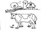 disegni animali in fattoria da colorare..la fattoria..disegno della fattoria da colorare..agriturismi in provincia di Varese, prodotti tipici varesini, distributori di latte fresco,agrigelateria..caseificio in fattoria didattica..