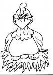 disegni animali in fattoria da colorare..gallina..disegno pulcino da colorare in fattoria didattica..disegno uovo di struzzo da colorare...struzzino da colorare...pulcino e pollo da colorare