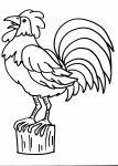 disegni da colorare animali della fattoria..gallo-gallina..disegno gallo da colorare in fattoria..didattica..disegno gallinella da colorare...uova pasquali da colorare..uova con pulcino da colorare..