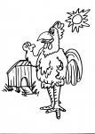 disegni animali fattoria da colorare..gallo-gallina..disegno pulcino da colorare..fattoria..struzzo da colorare..animali da cortile struzzo gallina gallo da colorare..uova di struzzo da colorare